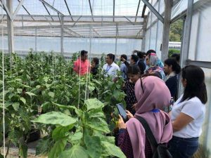 Transforming agriculture for sustainability and higher productivity